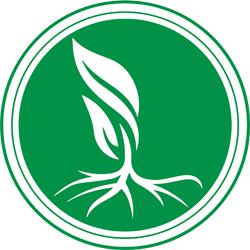 شرکت رونیاس